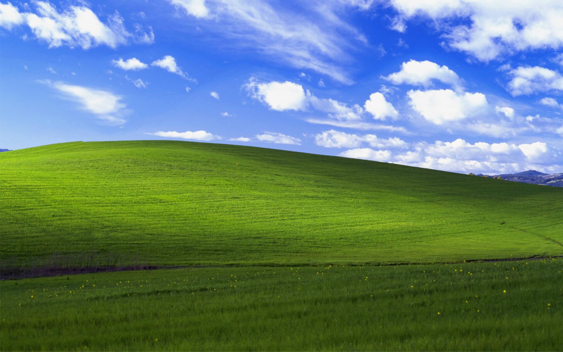 windows xp bliss 4k